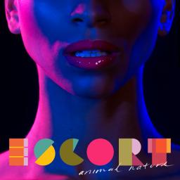 DIY Magazine – Escort 'Animal Nature' – Album Review